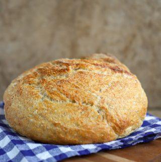 Knead Not Sourdough Bread (originally from Alton Brown)