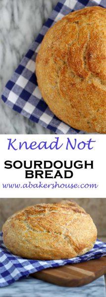Long Pin Knead Not Bread
