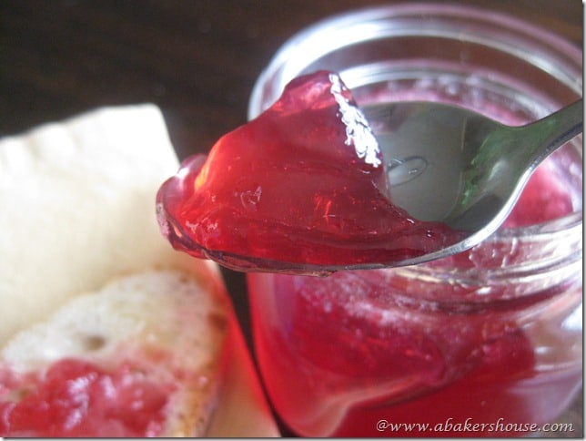 A Spoonful Of Homemade Jam Is Easy To Make With This Grape Jelly Recipe