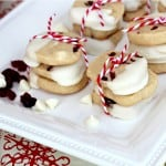 dried cranberry and white chocolate cookies