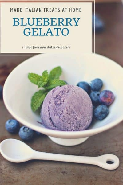 homemade blueberry gelato