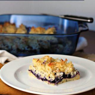 blueberry coconut squares