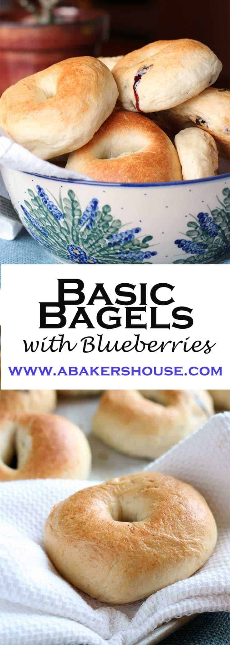 Making Blueberry Bagels at home doesn't require special equipment. Make these homemade basic bagels and see how easy it is to enjoy that bakery taste at home! #abakershouse #bagels #kingarthurflour #breadrecipe