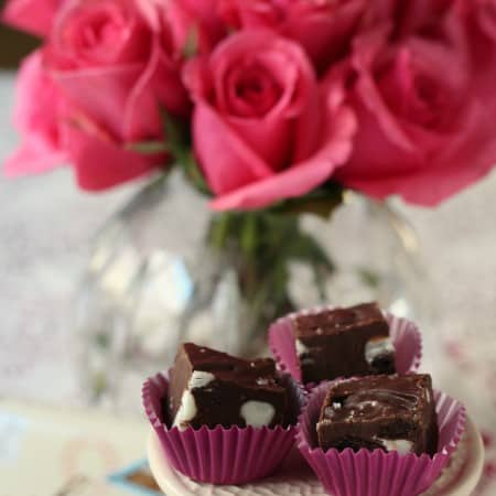 chocolate fudge with dried cherries