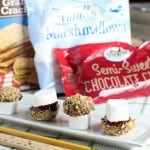 smores bites made for Sprouts Farmers Market