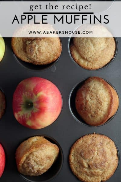 Apple cider muffins in muffin tin with apples with title text overlay