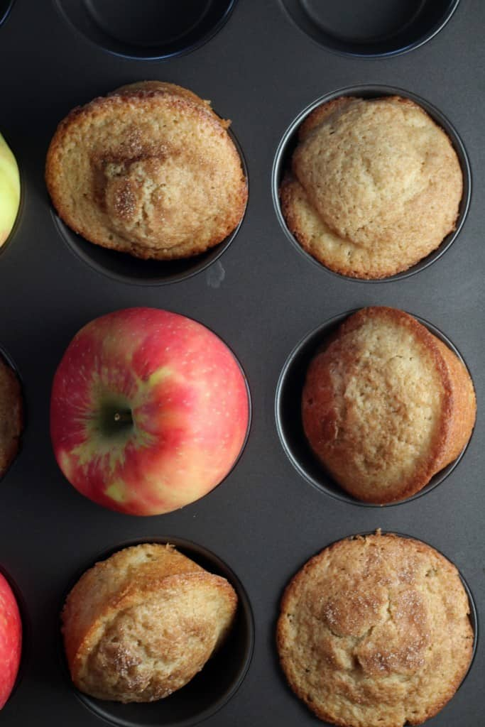 apple-cider-muffins in muffin baking tray with apples