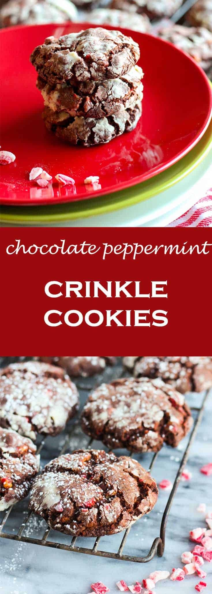 Chocolate peppermint crinkle cookies are festive and holiday-party ready. #abakershouse #peppermintcookies #chocolatecookies #cookieexchange #cookierecipe #Christmascookie #holidaybaking