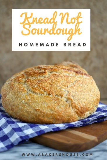 Knead Not sourdough bread on a blue and white napkin