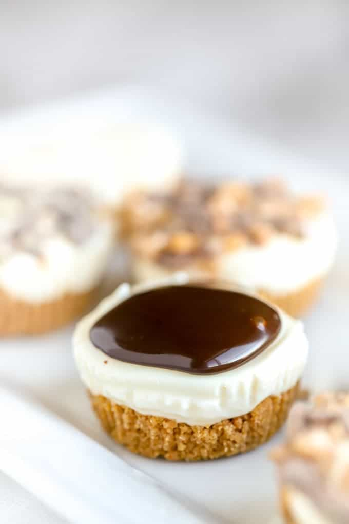 no bake cheesecake bites with chocolate topping