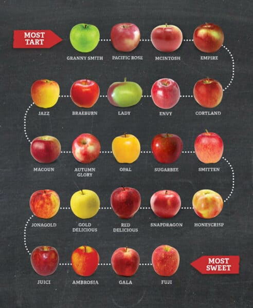 Apple graphic showing different kinds of apples