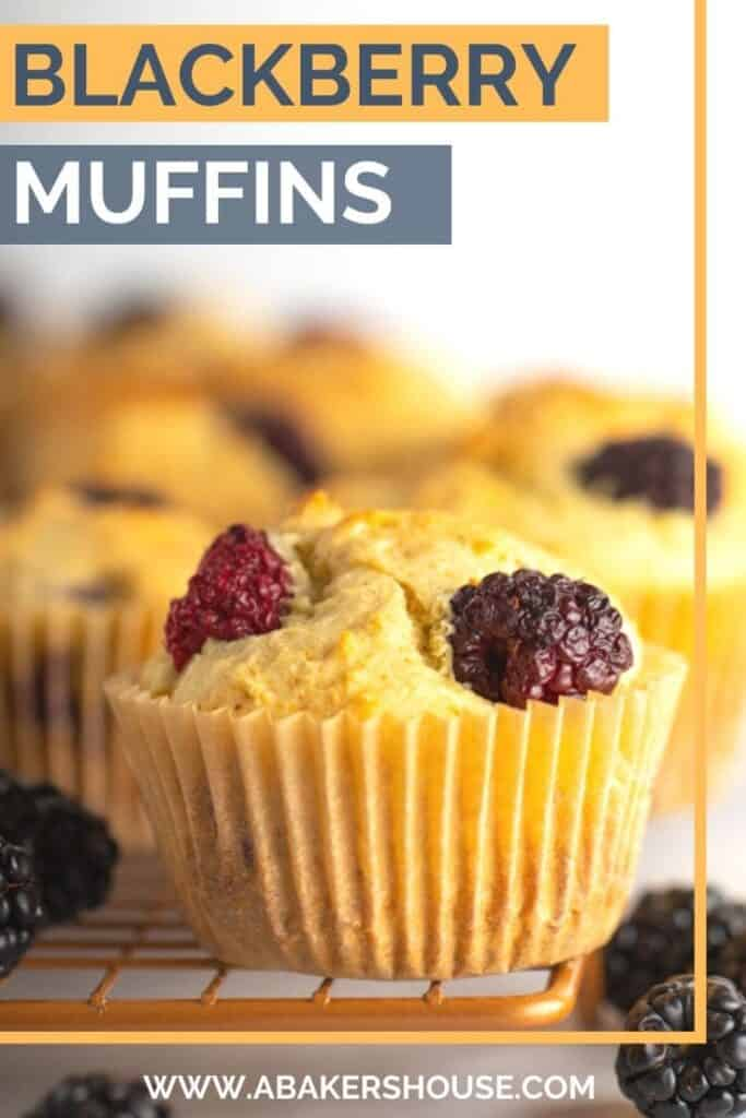 Pinterest Blackberry muffins with text overlay