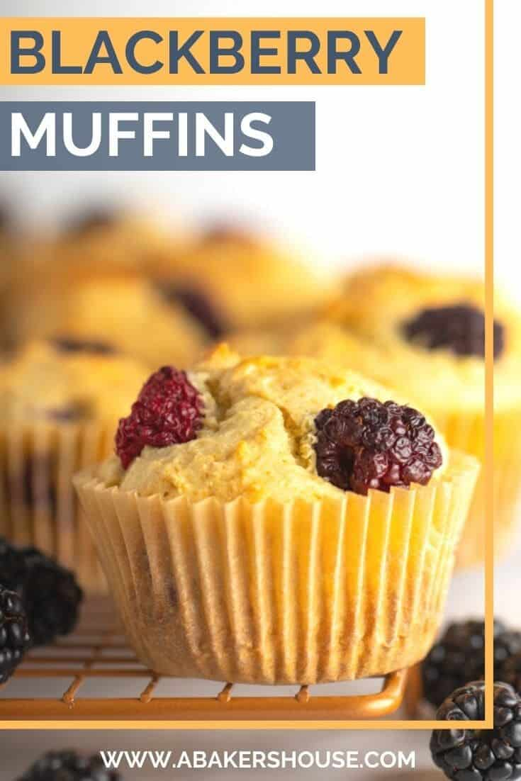 Blackberry muffins are tender and fluffy and bursting with fresh berries! Bake with dairy free beverages from Silk® to make this vegan muffin recipe in 30 minutes! . #sponsored #LoveMySilk #PlantBasedTastesGreat #vegan #LoveSprouts #OatYeah #oatmilk #abakershouse #blackberries #muffins #veganmuffins #glutenfree #glutenfreemuffin